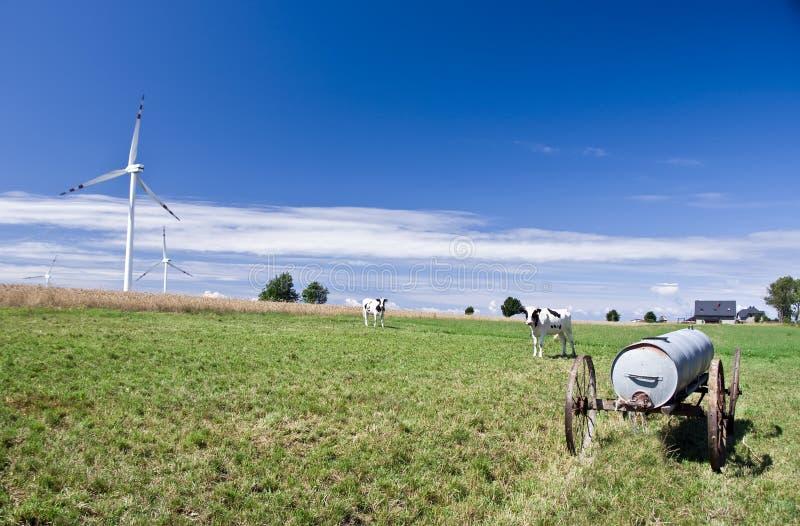 Prado con los molinoes de viento imagen de archivo
