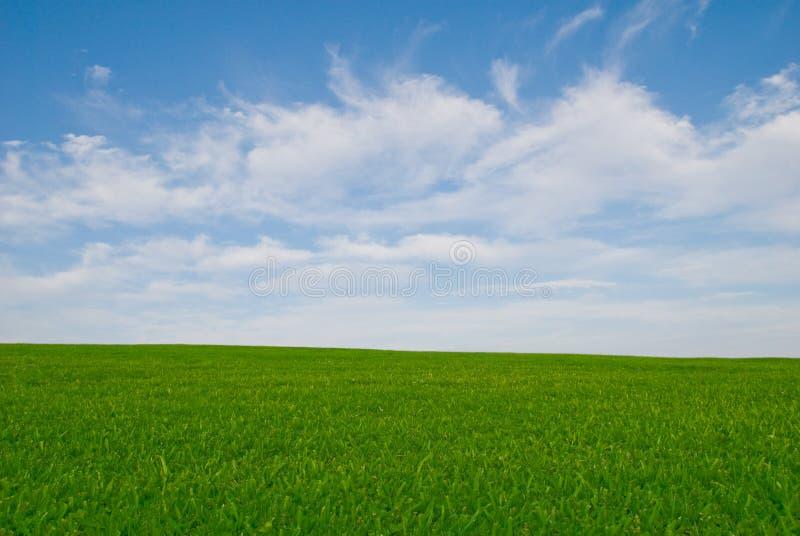 Prado da grama e céu azul fotos de stock royalty free