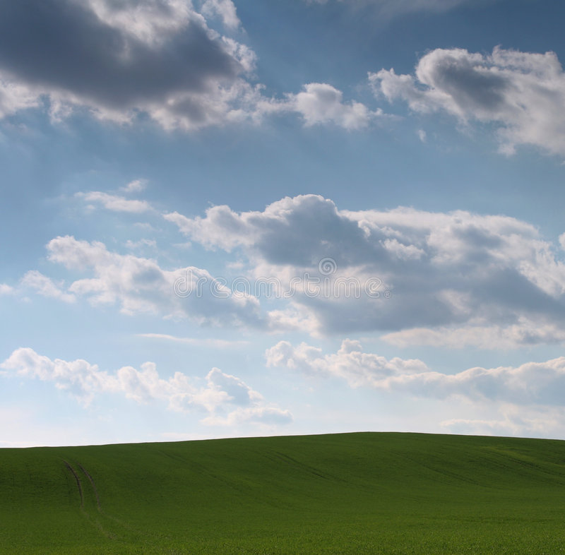 Download Prado da mola imagem de stock. Imagem de verde, céu, cenário - 527985