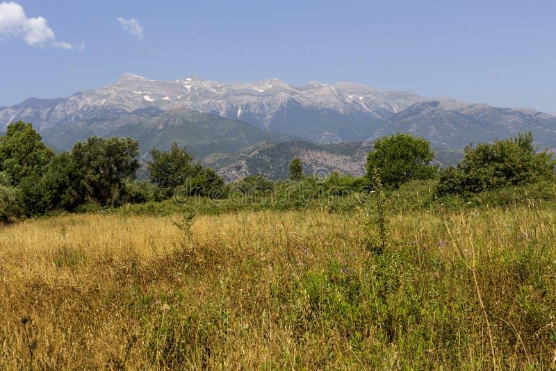 Prado da montanha nas montanhas Grécia, Peloponnese fotos de stock royalty free
