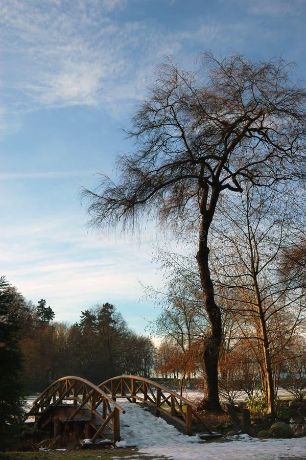 Prado de Ceperley, parque de Stanley fotos de stock royalty free