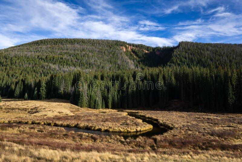 Prado de Colorado fotografía de archivo