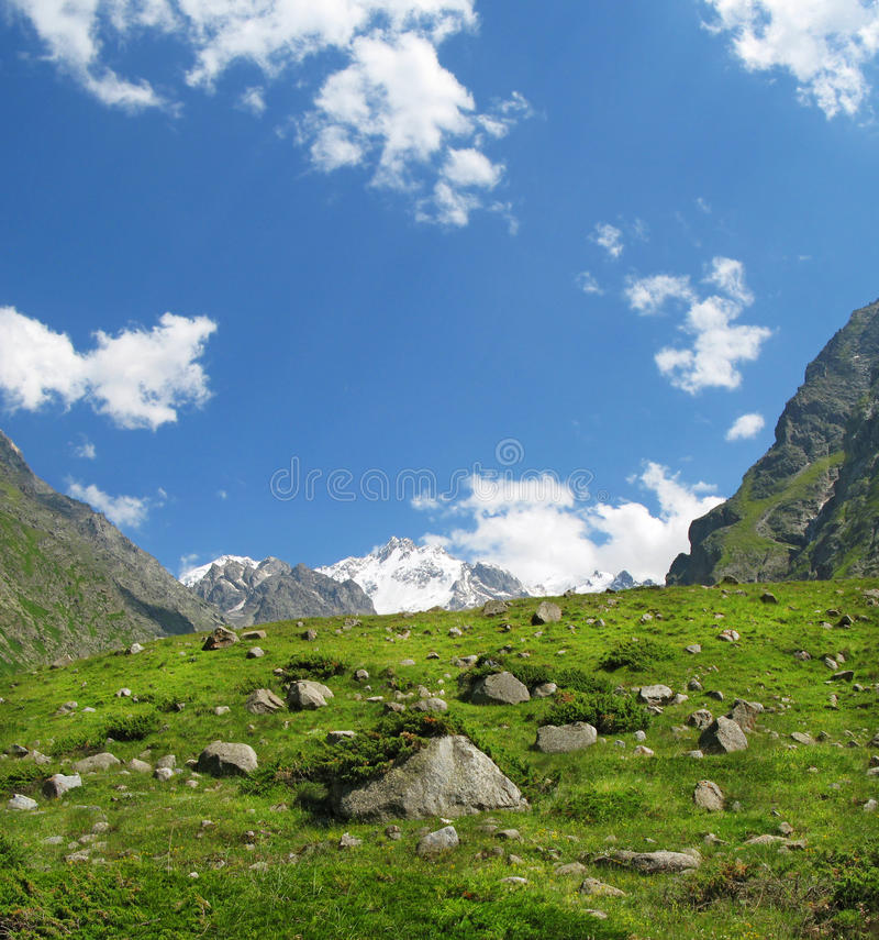 Prado de la alta montaña en la montaña del Cáucaso Elbrus imagen de archivo