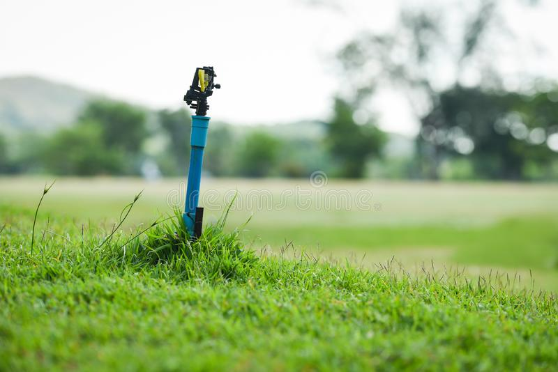 prado de la hierba verde del jardín del agua del saltador con la corte del golf del campo fotografía de archivo libre de regalías