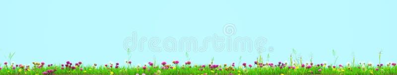 Prado de la primavera con las flores soleadas representación 3d libre illustration