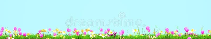 Prado de la primavera con las flores soleadas representación 3d stock de ilustración