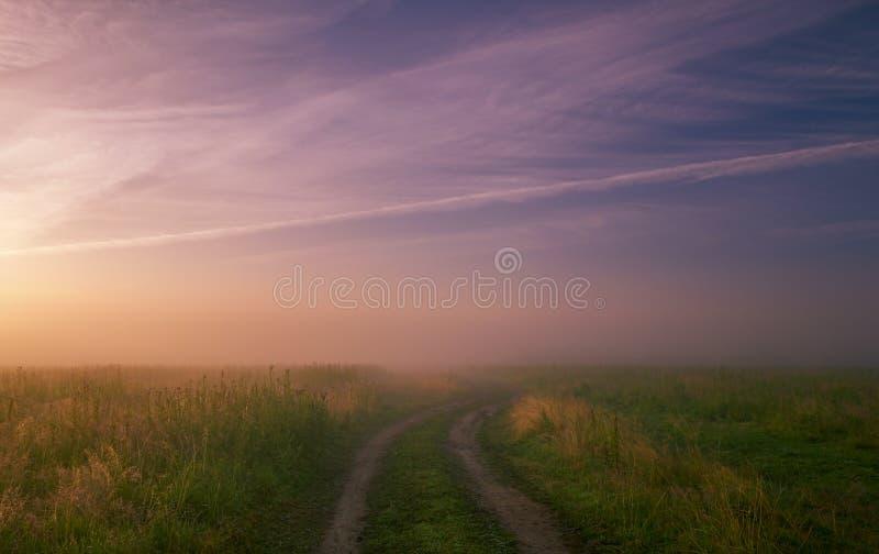 Prado de niebla de la mañana Paisaje del verano con la hierba verde, el camino y las nubes foto de archivo libre de regalías