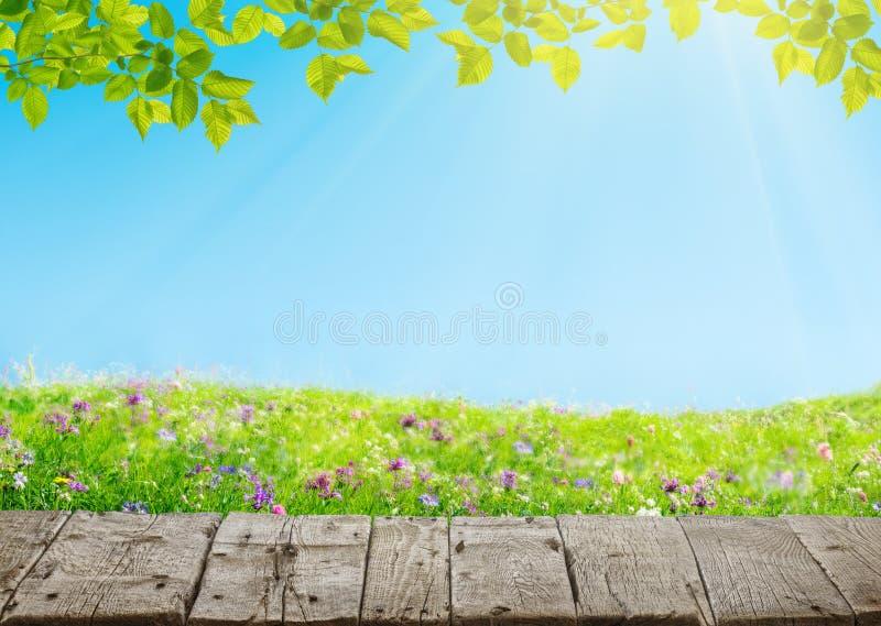 Prado de primavera con flores y viejo suelo de madera granulado fotografía de archivo libre de regalías