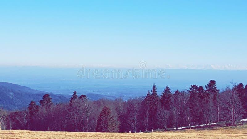 Prado del campo de la montaña del bosque del cielo imagenes de archivo