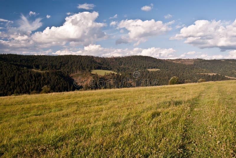 Prado do outono com panorama agradável das montanhas em Eslováquia imagem de stock