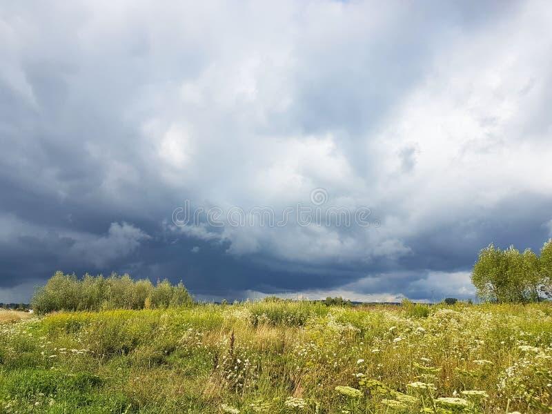 Prado do verão nos raios do sol com um nuvem tempestuosa iminente Mudança do tempo Tempestade em um dia ensolarado Natureza do CL fotos de stock royalty free