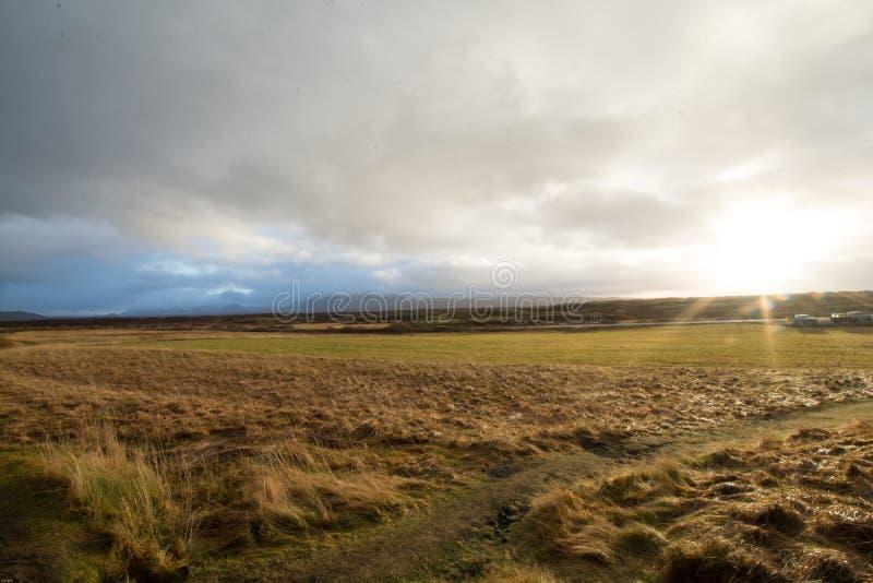 Prado do verde de Islândia foto de stock royalty free