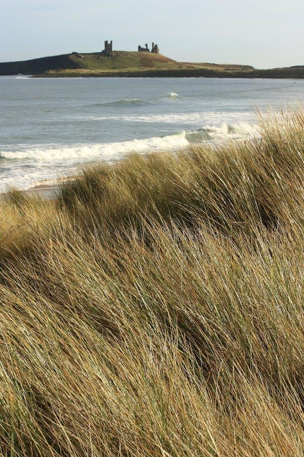 Prado en la costa de Northumberland cerca de Dunstanburgh imagen de archivo libre de regalías