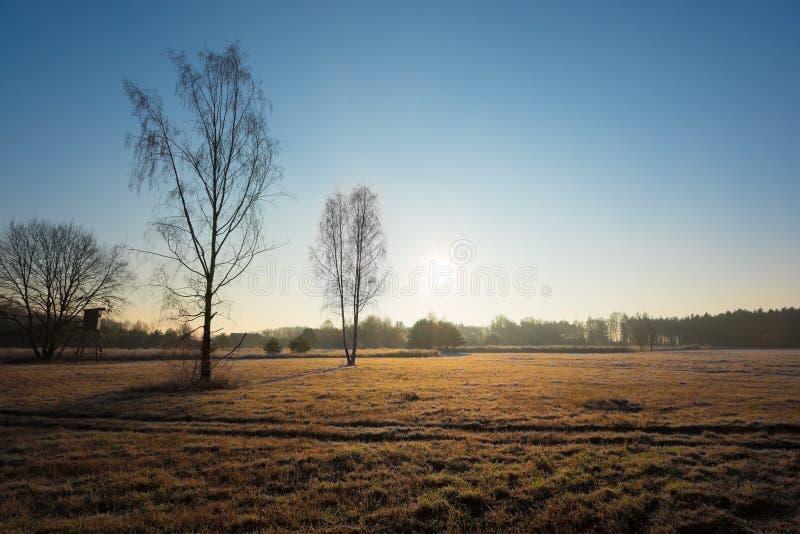 Prado en una mañana del otoño fotos de archivo