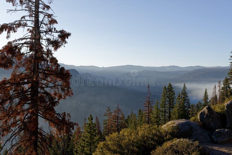 Prado fumarento no parque nacional de Yosemite imagens de stock