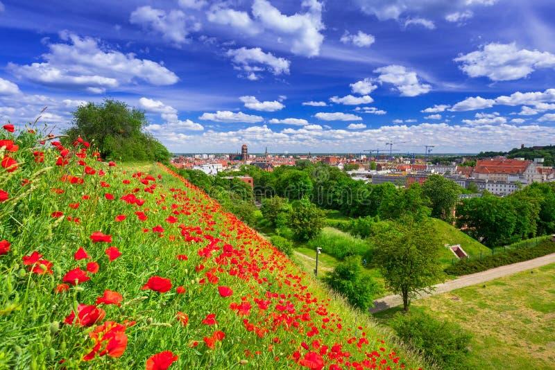 Prado idílico no centro de cidade de Gdansk foto de stock