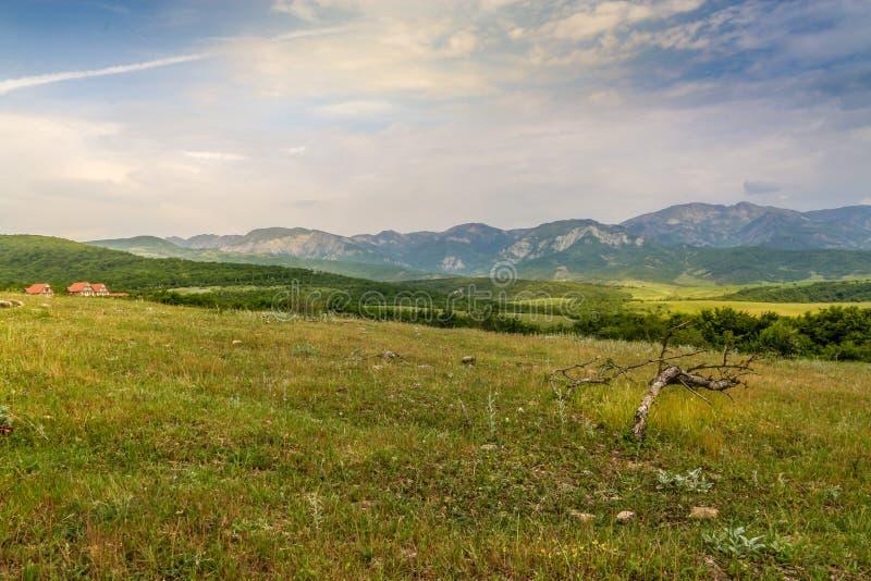 Prado verde en el fondo con las montañas distantes Abra el campo con la hierba verde imagenes de archivo