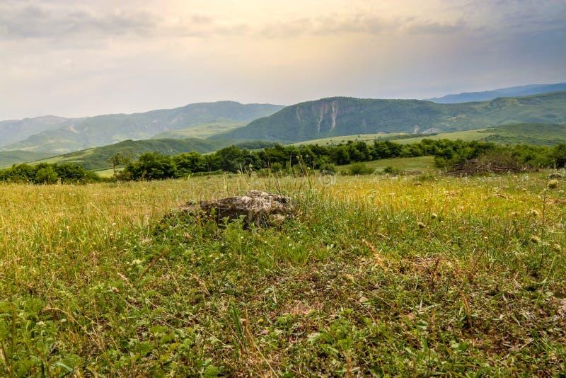 Prado verde en el fondo con las montañas distantes Abra el campo con la hierba verde fotos de archivo libres de regalías