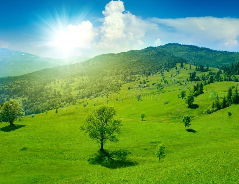Prado verde fantástico na montanha fotografia de stock