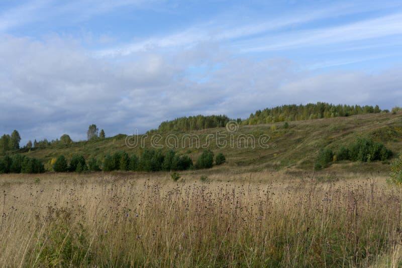 Prado verde no fundo das montanhas crimeanas imagem de stock royalty free