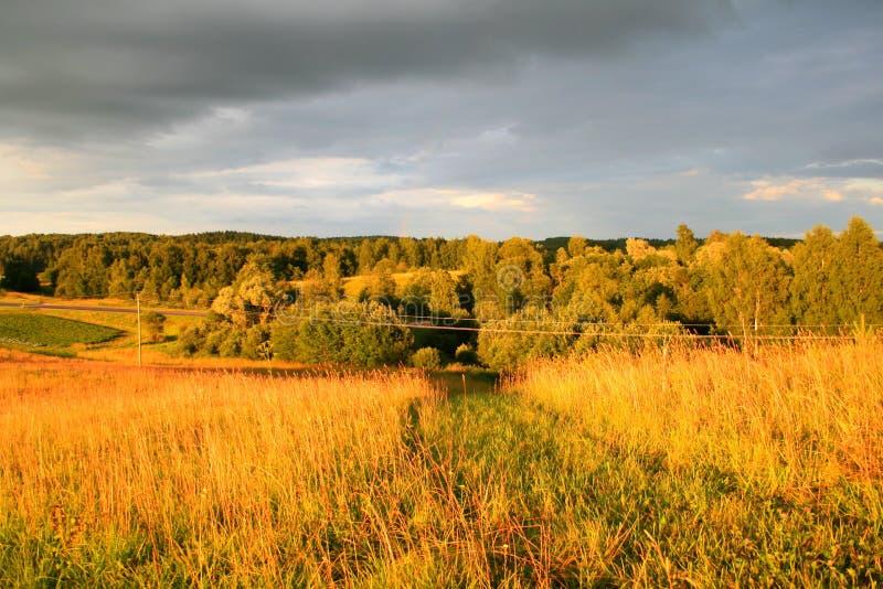 Prado y bosque en la puesta del sol fotos de archivo libres de regalías