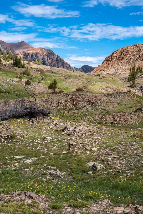 Prado y montañas a lo largo del alza del rastro del lavabo de 20 lagos en California Sierra del este Nevada Mountains Prado bonit imágenes de archivo libres de regalías
