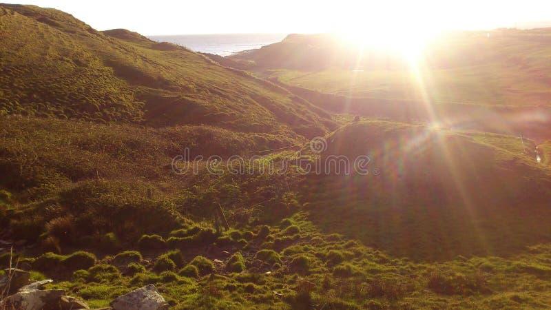Prados bonitos na luz da noite de um por do sol na Irlanda imagens de stock