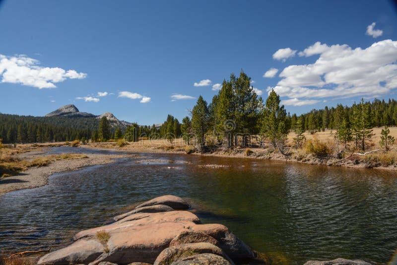Prados de Tuolumne en el parque nacional de Yosemite fotografía de archivo libre de regalías