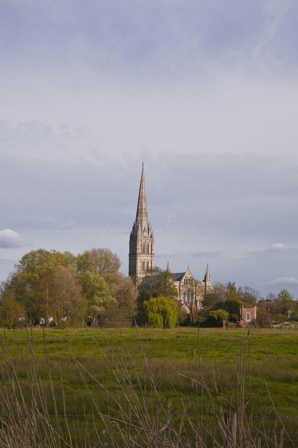 Prados de Wiltshire imagem de stock