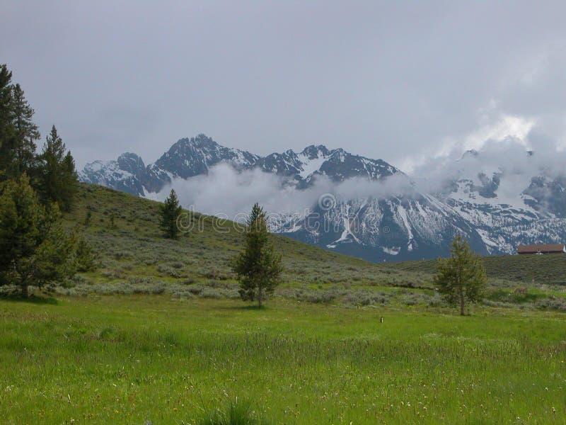 Prados do Sawtooth - Idaho foto de stock