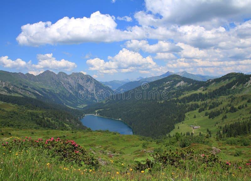 Prados, lago Arnensee y nubes verdes del verano imágenes de archivo libres de regalías