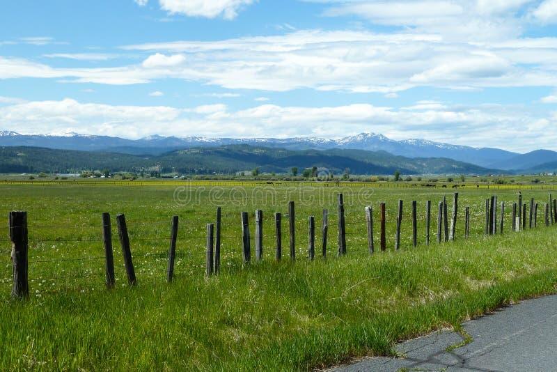 Prados novos, Idaho fotos de stock