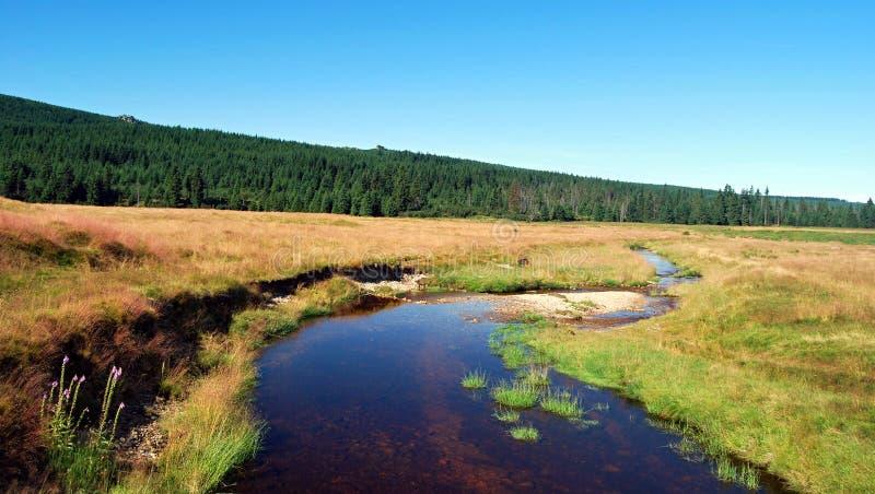 Download Prados Y Río De Wielka Izera Imagen de archivo - Imagen de montañas, hierba: 44853243
