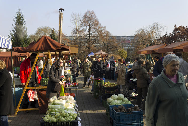 Prag-Herbstlandwirtmärkte stockfotos