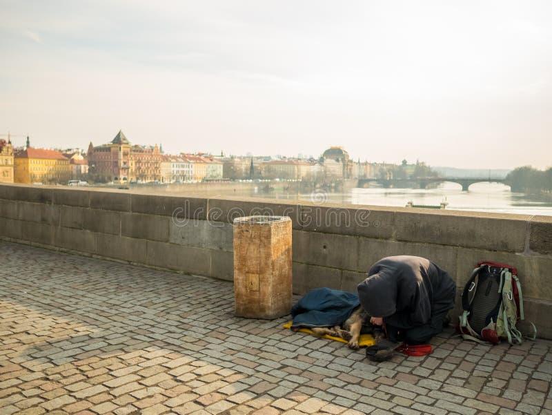 PRAG, TSCHECHISCHE REPUBLIK - 20. FEBRUAR 2018: Kniender Mann und sein Hund, die auf Charles Bridge bitten Bestimmungsort für Rei stockfotos