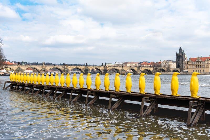PRAGA, czech - MARZEC 11, 2016: Żółte Penguine statuy Rzecznym Vltave w Praga, czech Charles most w tle obraz stock