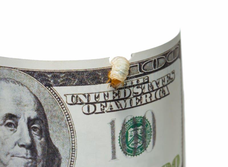 Praga do dinheiro - a dispersão financia o conceito fotografia de stock royalty free