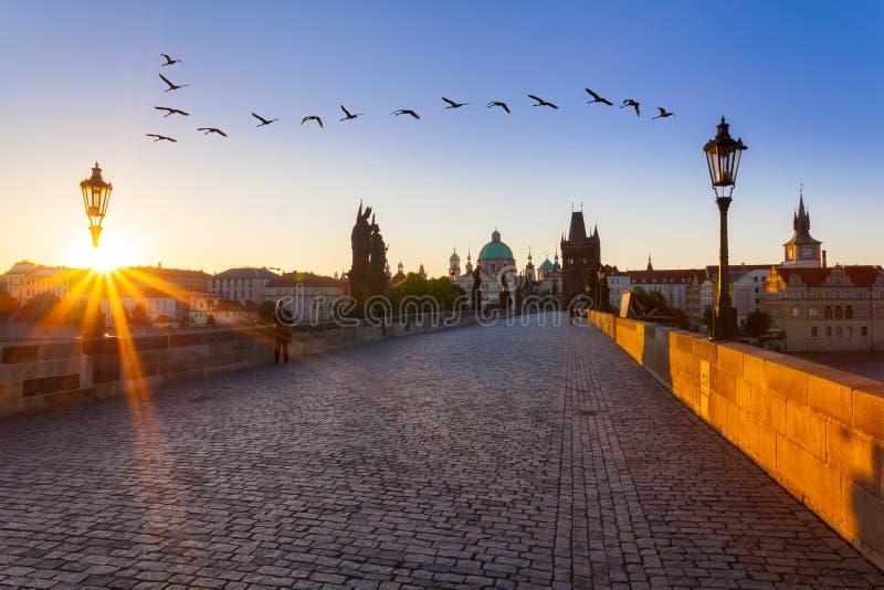 Praga, República Checa Charles Bridge com sua estatueta no nascer do sol fotos de stock
