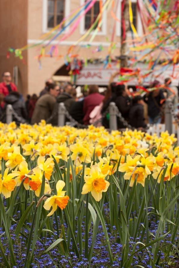PRAGA, republika czech - KWIECIEŃ 15, 2017: Daffodils przy Starym rynkiem na wielkanocy obrazy royalty free