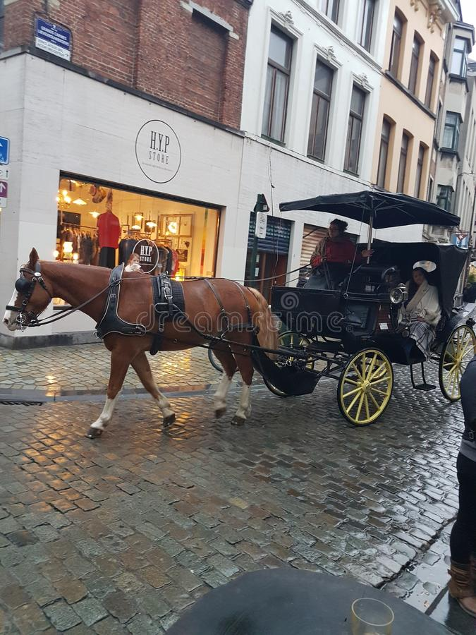 Prague carrolluche stock fotografie