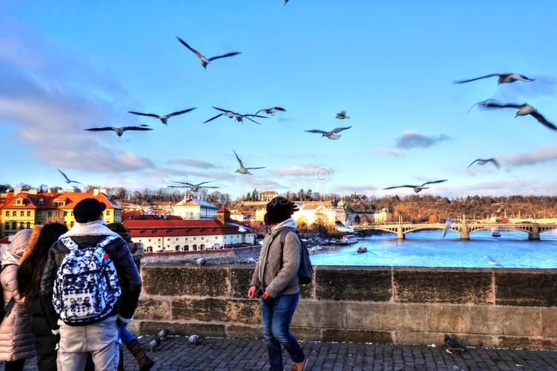 Download Prague - Charles Bridge editorial photo. Image of city - 83714371