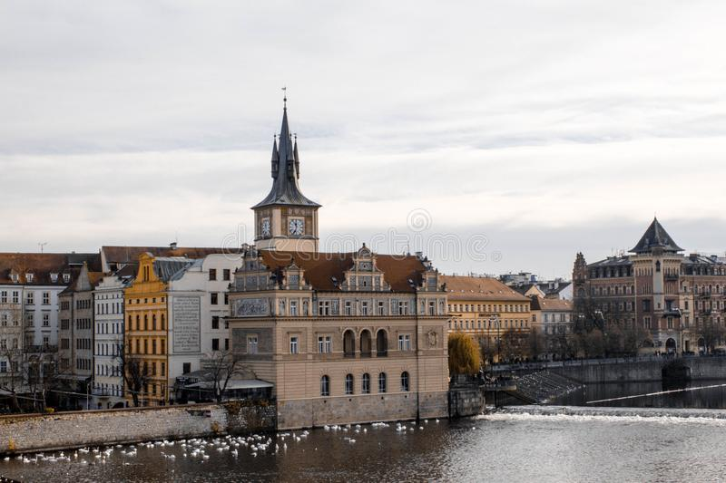 Prague.Czech Republic. 2016, November. Beautiful view of old Prague and Vltava river on a cloudy day. Swans by the river in Prague royalty free stock photography