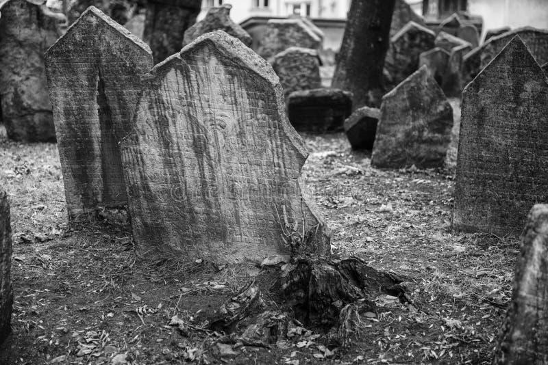 Prague forntida judisk kyrkogård som visar minnes- stenar fotografering för bildbyråer