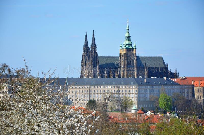 Prague slott i vår fotografering för bildbyråer