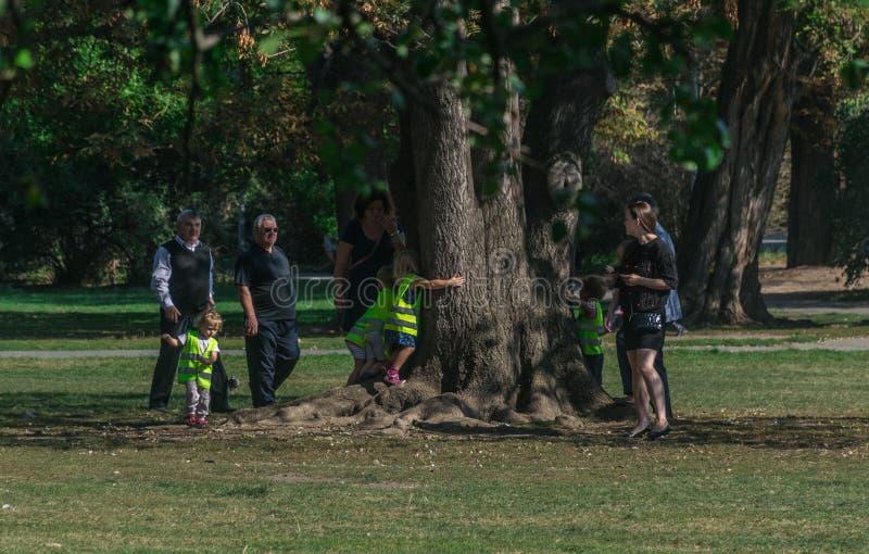 Prague Tjeckien - September 10, 2019: ungar som kramar ett träd under förälderövervakning royaltyfria foton