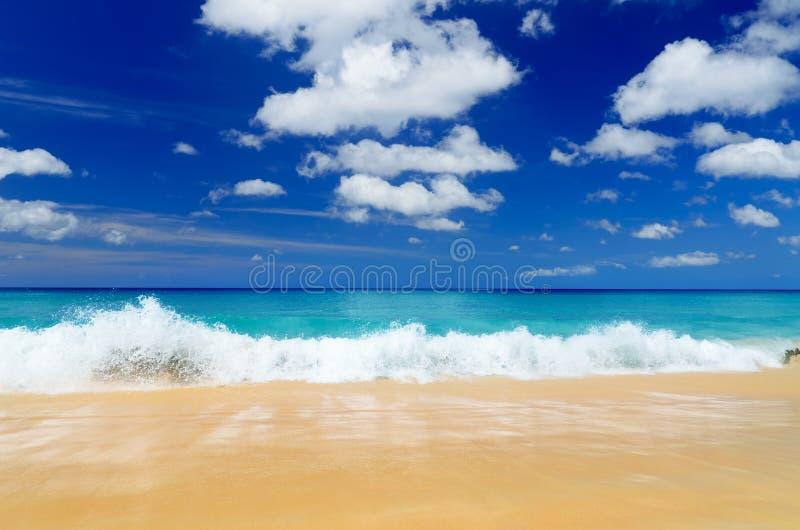 Download Praia foto de stock. Imagem de azul, beleza, feriado - 26521648