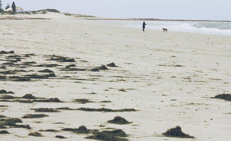 Praia Adelaide de Henley, Austrália foto de stock royalty free