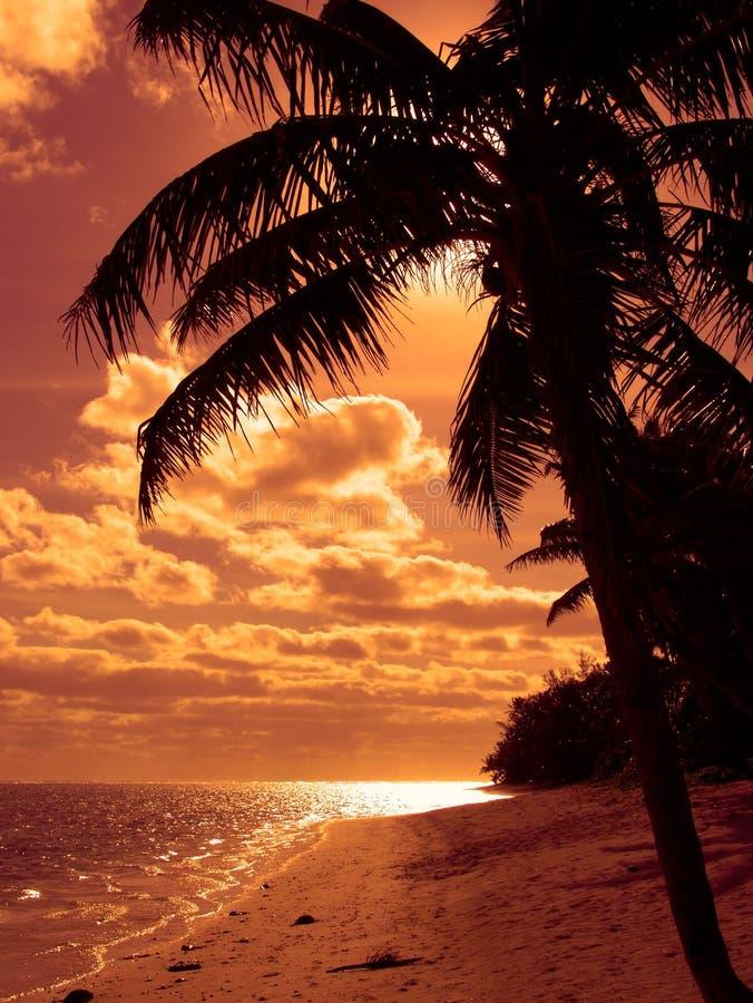 Praia alaranjada brilhante