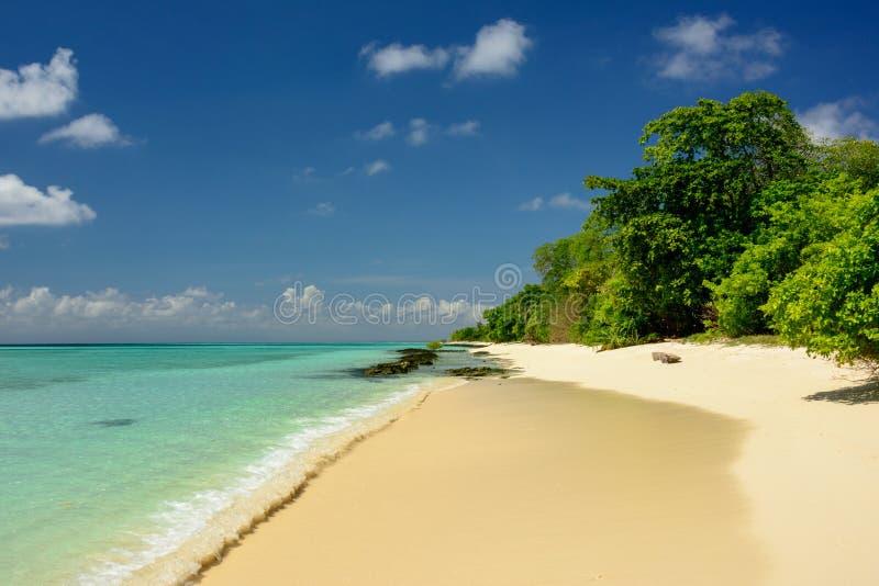 Praia arenosa tropical imagens de stock