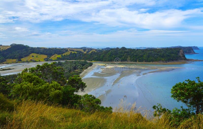 Praia Auckland Nova Zelândia de Wenderholm; Parque regional imagem de stock royalty free